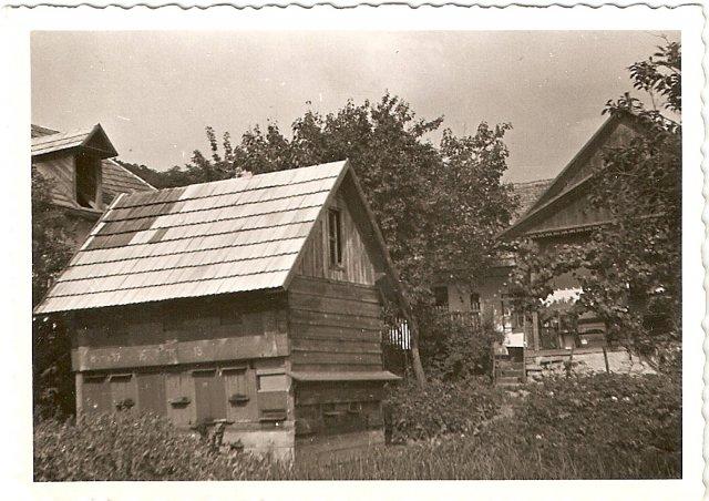 Dvorniky 1947 skola-vcelin1